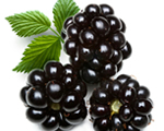 150w_blackberries