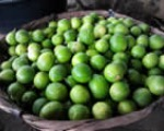 basket-of-limes150x120